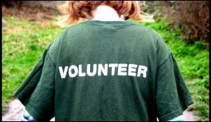 Volunteer Day @ Herts & Essex Community Farm | Harlow | England | United Kingdom